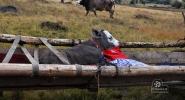 Sierpien-2012-Wyprawa-do-Rumuni-010